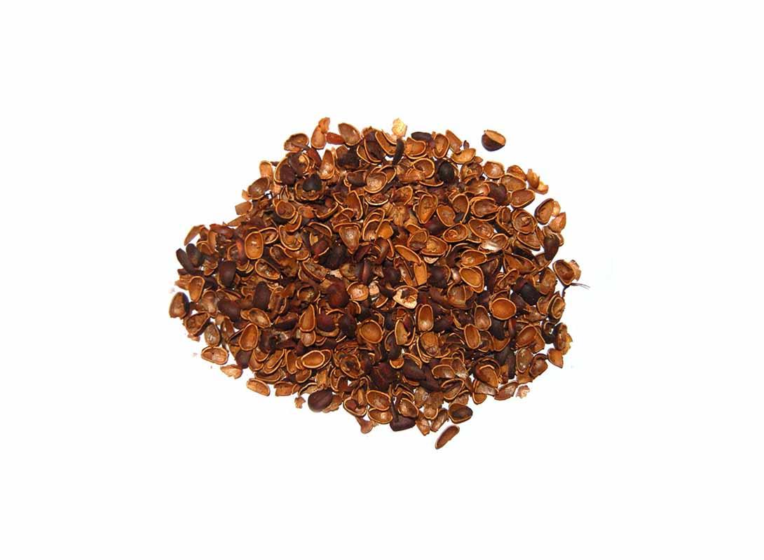 Скорлупа кедрового ореха, 50 г